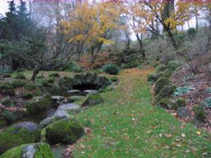 fall-2011-rock-garden-500x375